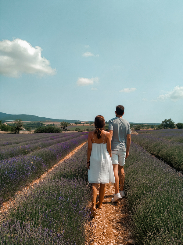 flores_provenza