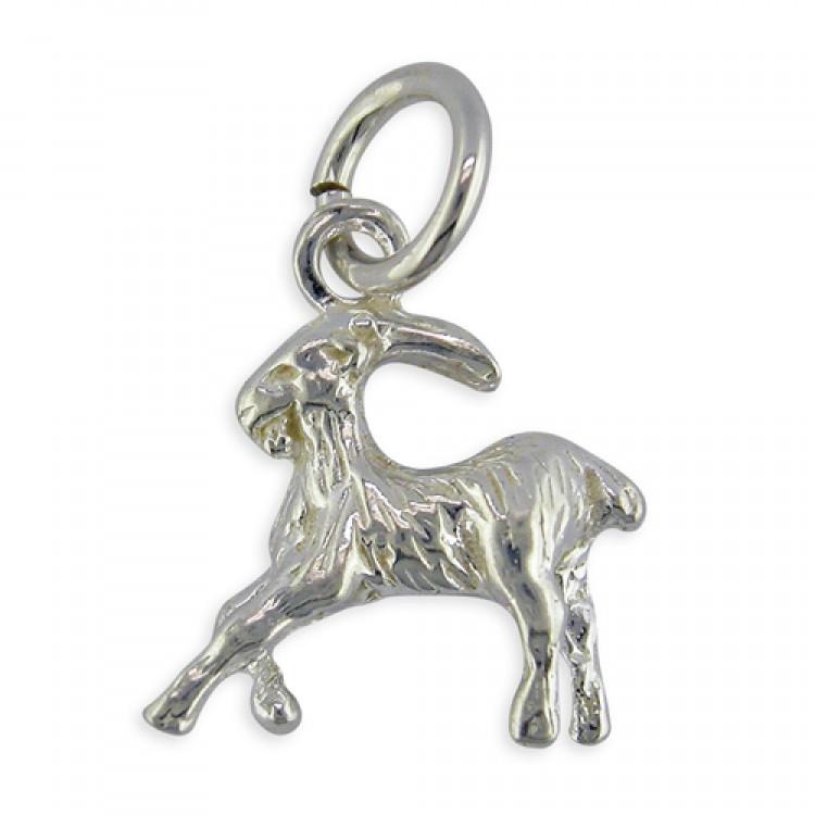 Capricorn zodiac The Goat December 22nd – January 19th