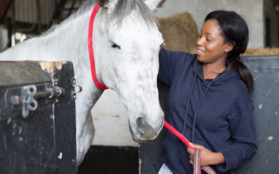 Strength & Learning Through Horses needs your help