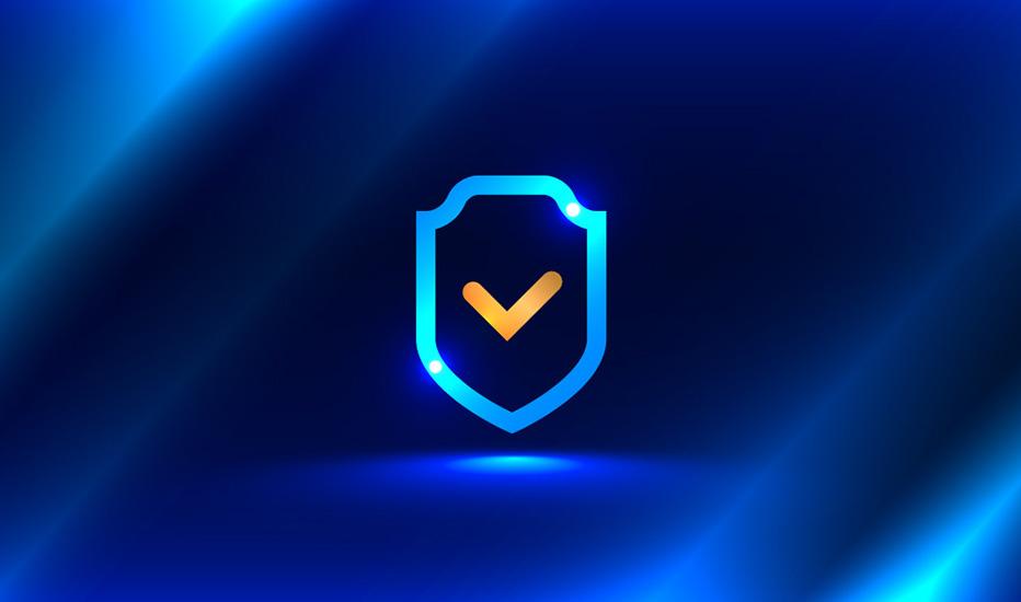 Güvenlik Duvarı - IPS / IDS