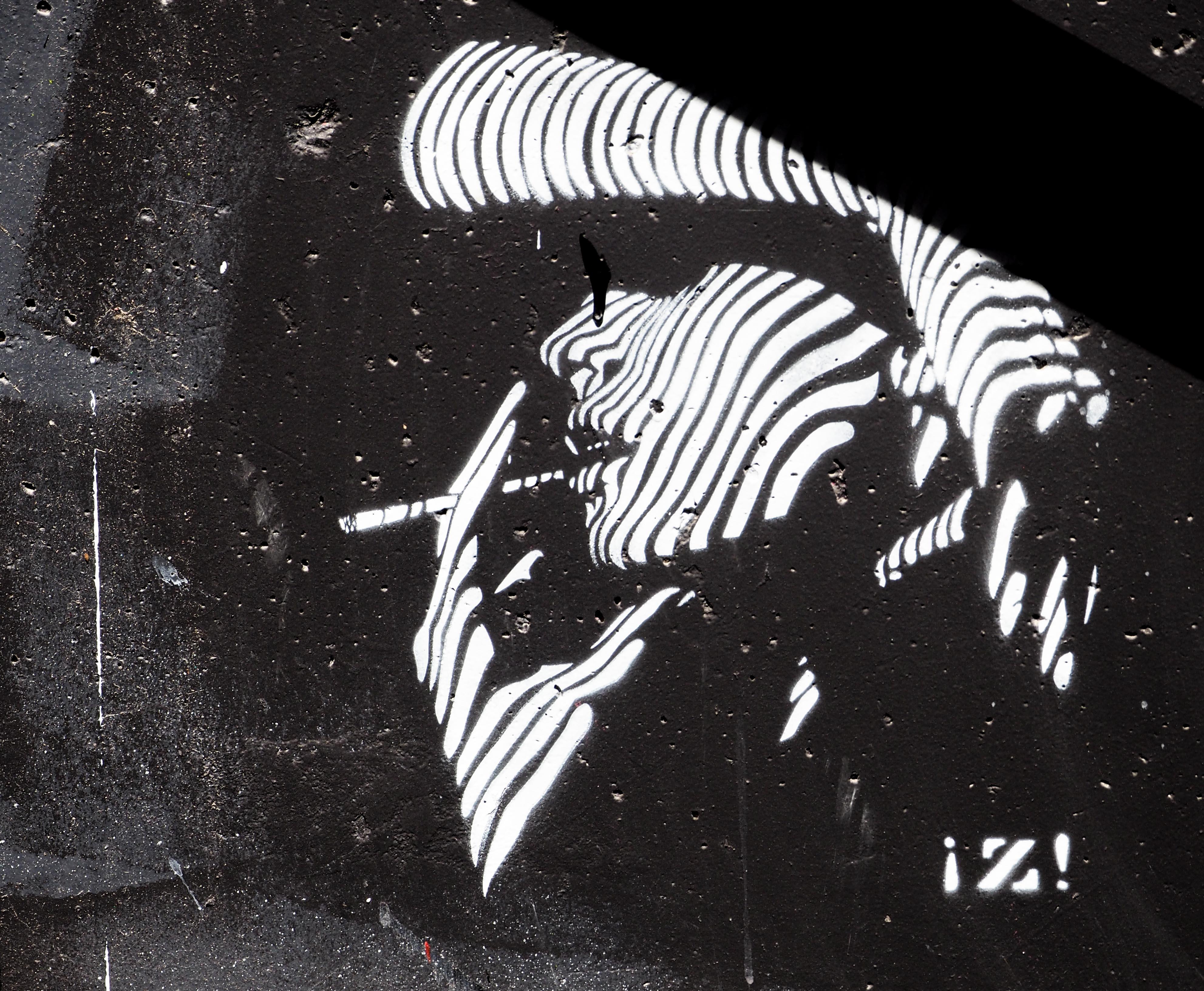 Zebrafrau als Stencil von Zapata
