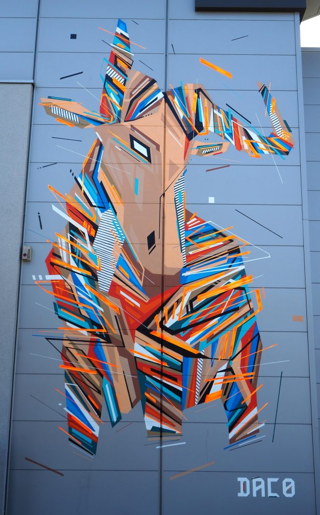 Antilope oder Kuh?