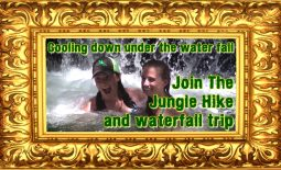 Jungle Hiking and Waterfall Trip