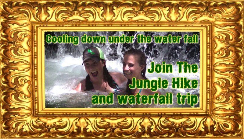 Jungle Hiking and Waterfall Trip