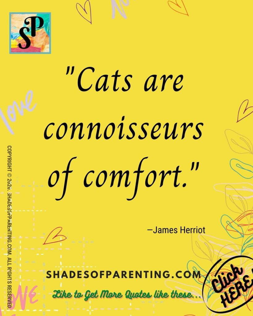 Funny Pet Quotes