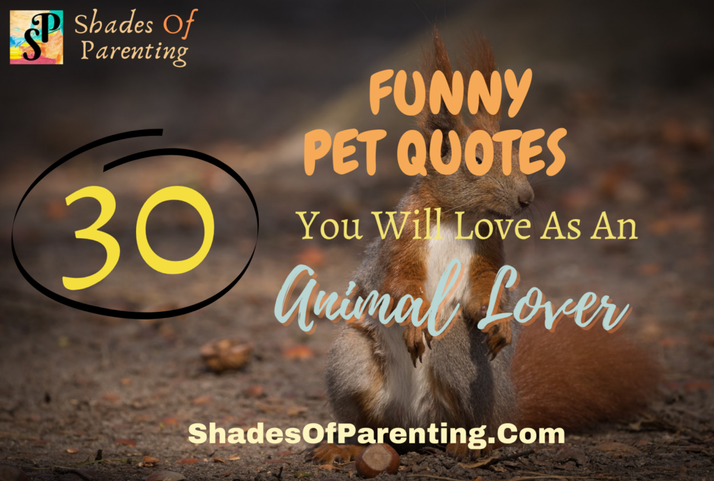 30 FUNNY PET QUOTES You will love as an animal lover