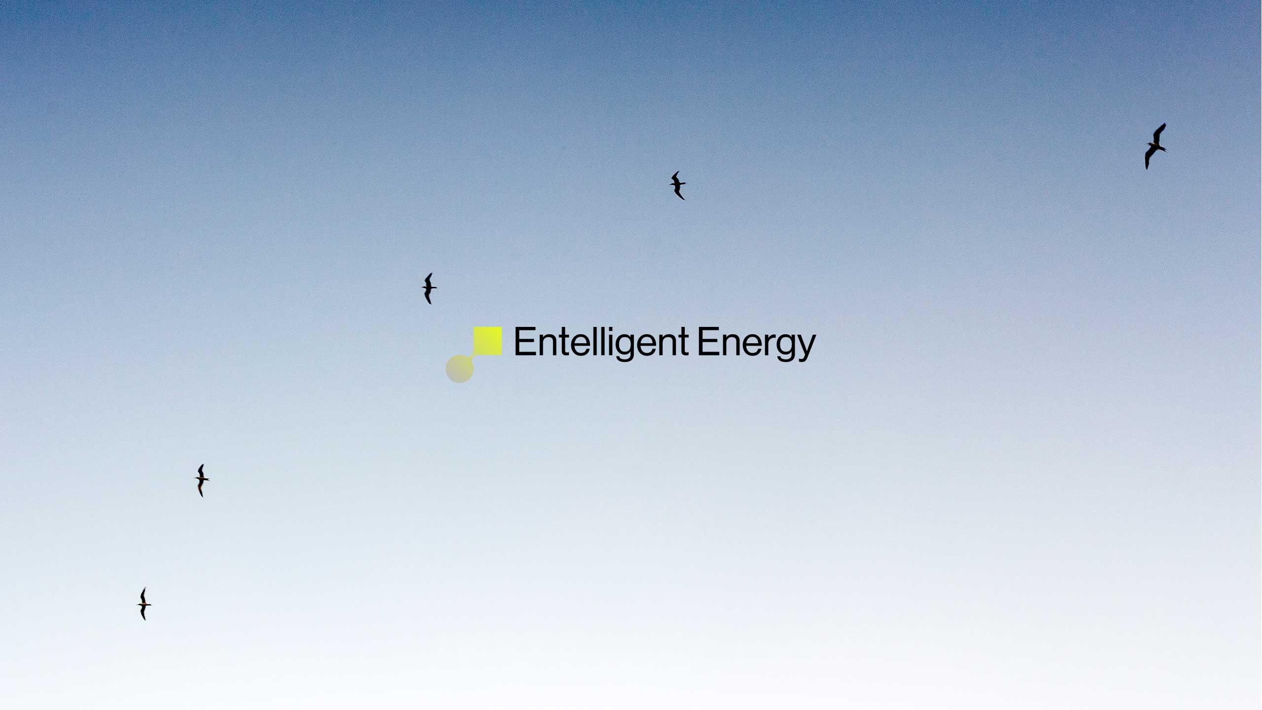 Entelligent-Energy-07