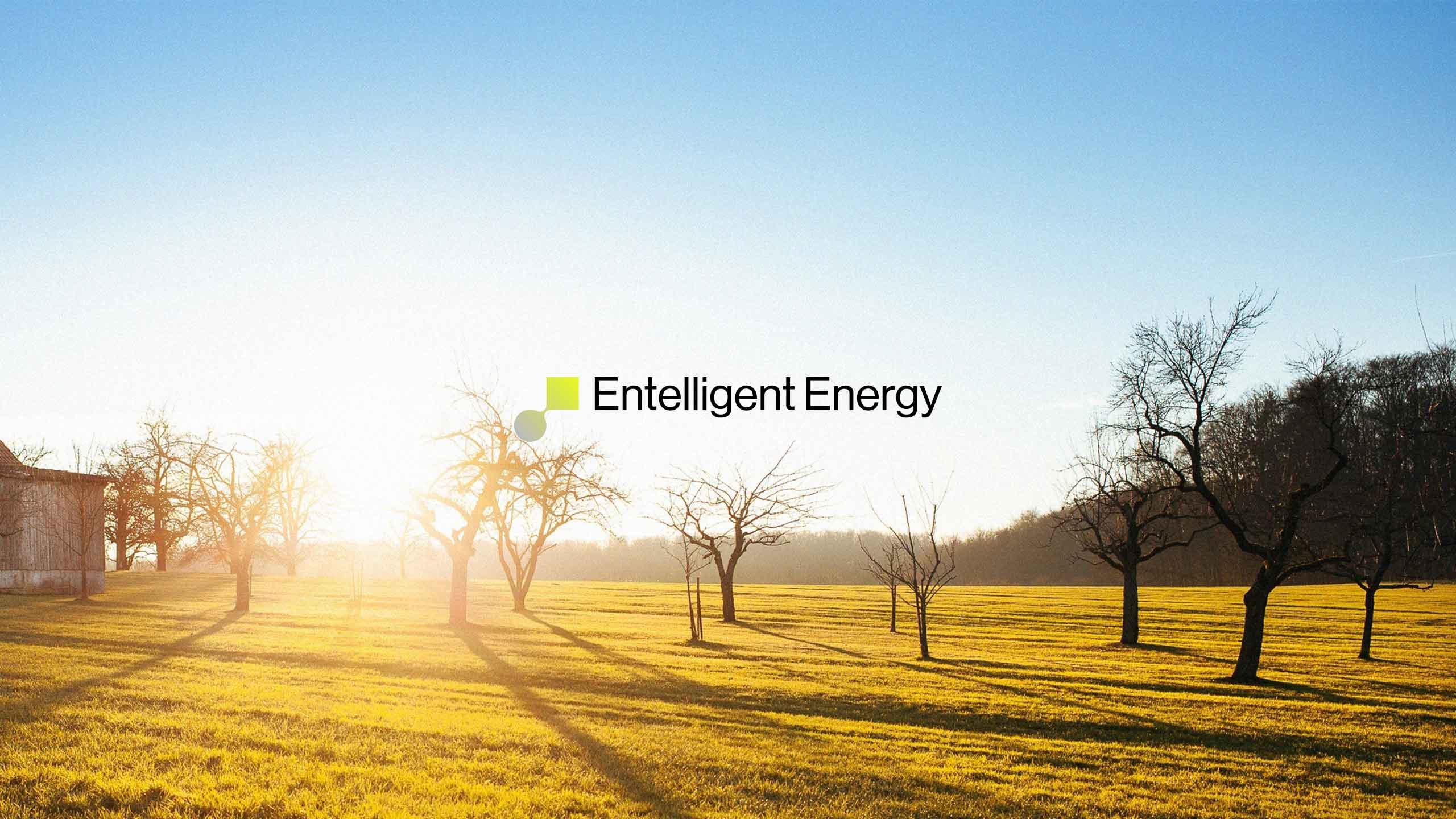 Entelligent-Energy-07d