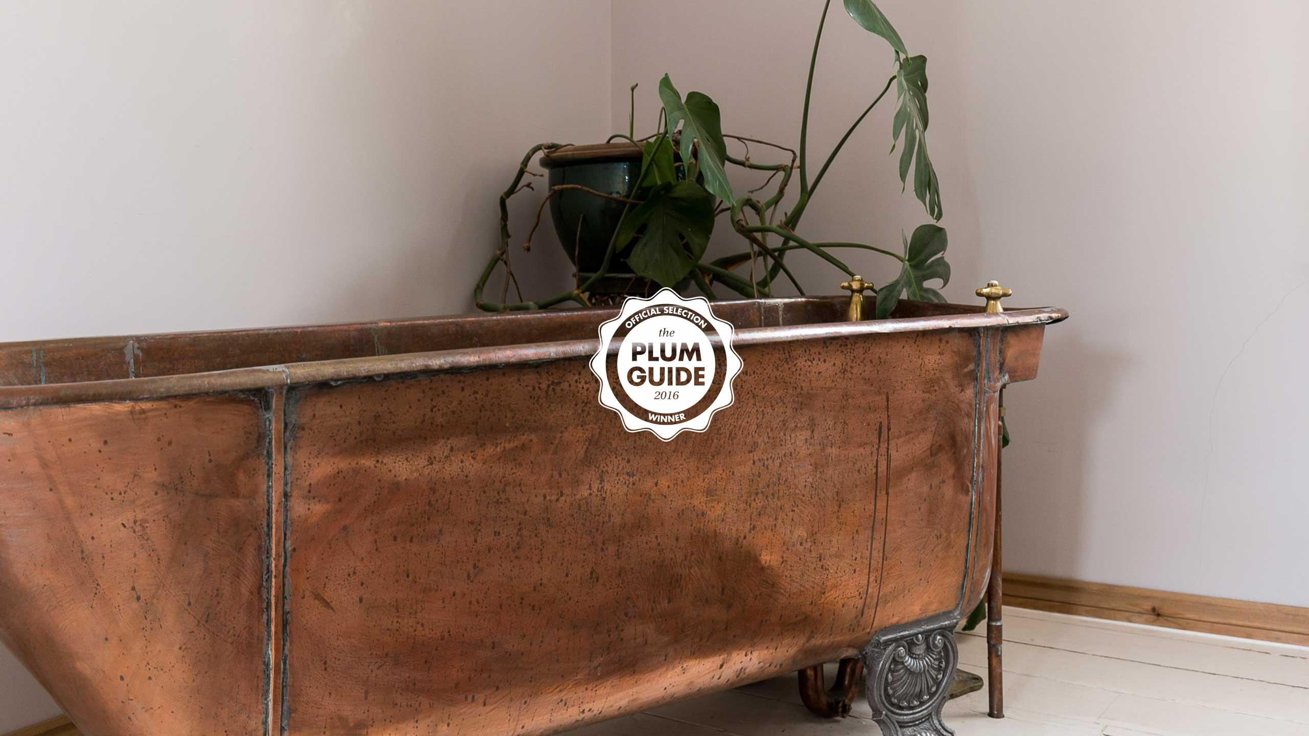 Plum-Guide-11