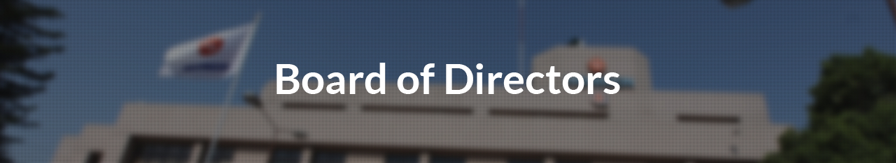 board of directory
