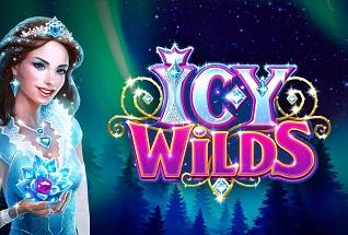 Icy Wild Slots