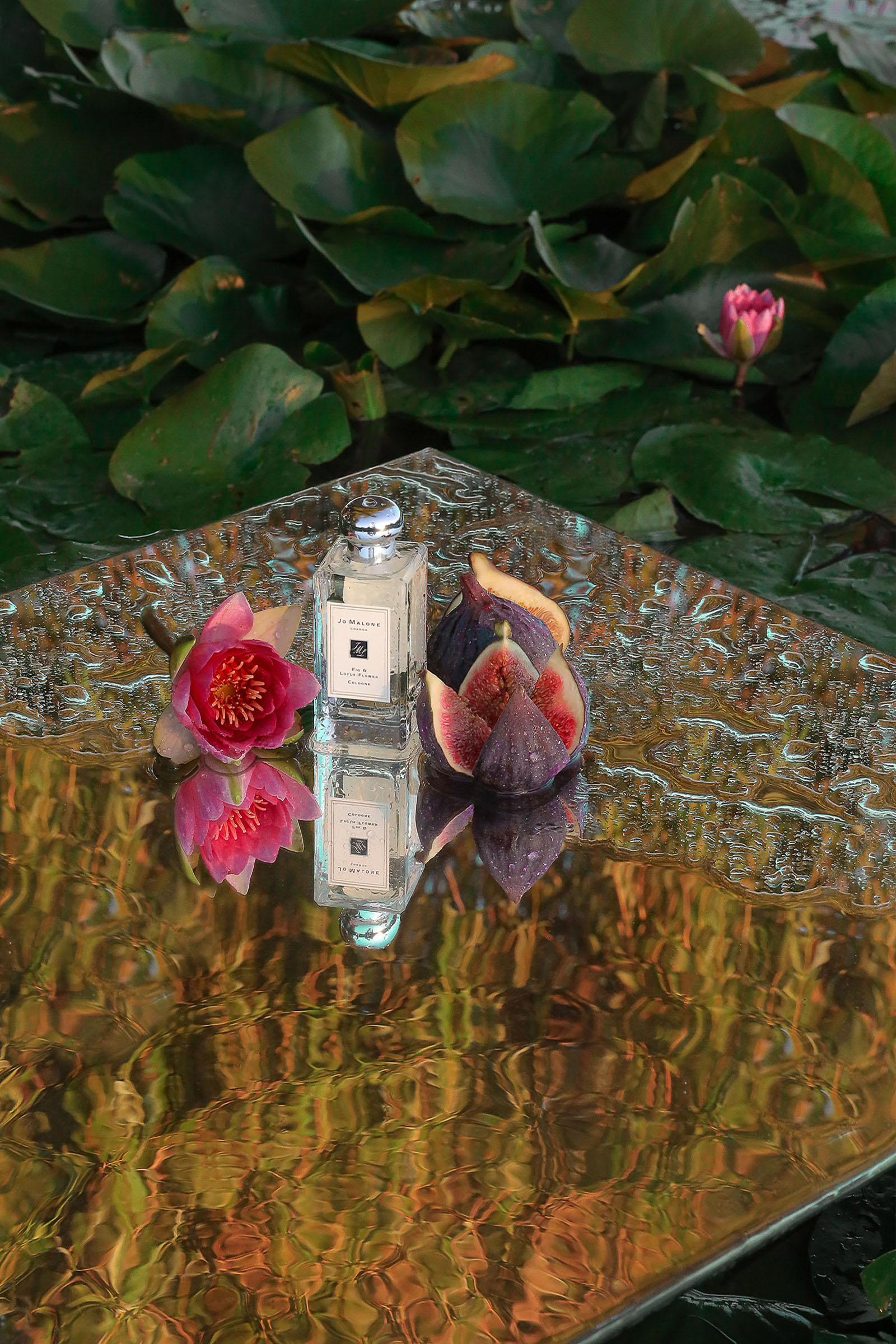 JO MALONE FIG & LOTUS FLOWER