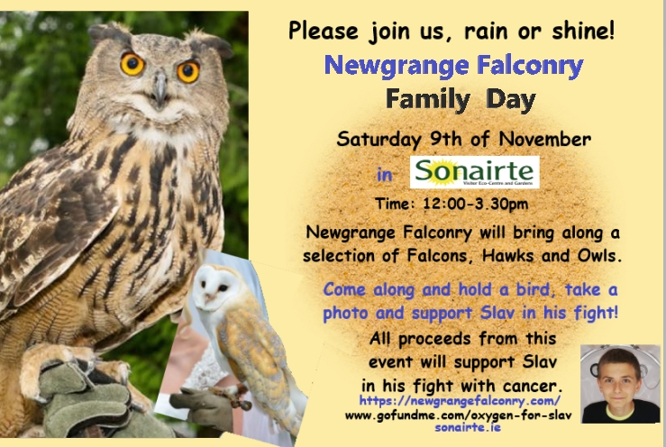 Falconry Day - fundraiser event for Slav