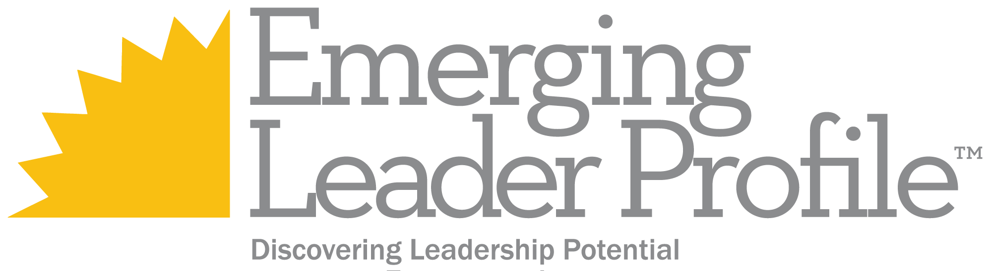 Emerging-Leaders-Profile1