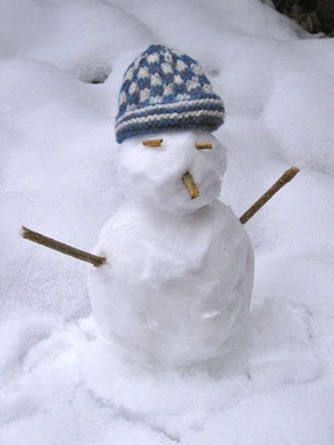 Snowtwig