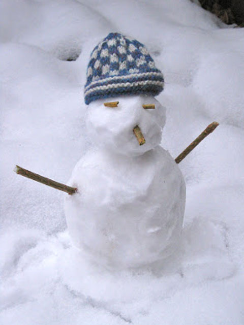 Read more about the article Snowtwig