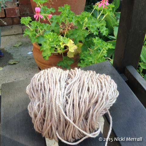Beige knitting yarn and pot of flowers