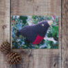 Photo of Christmas Robin greetings card on wooden background. Greetings card shows knitted robin sitting in real holly bush
