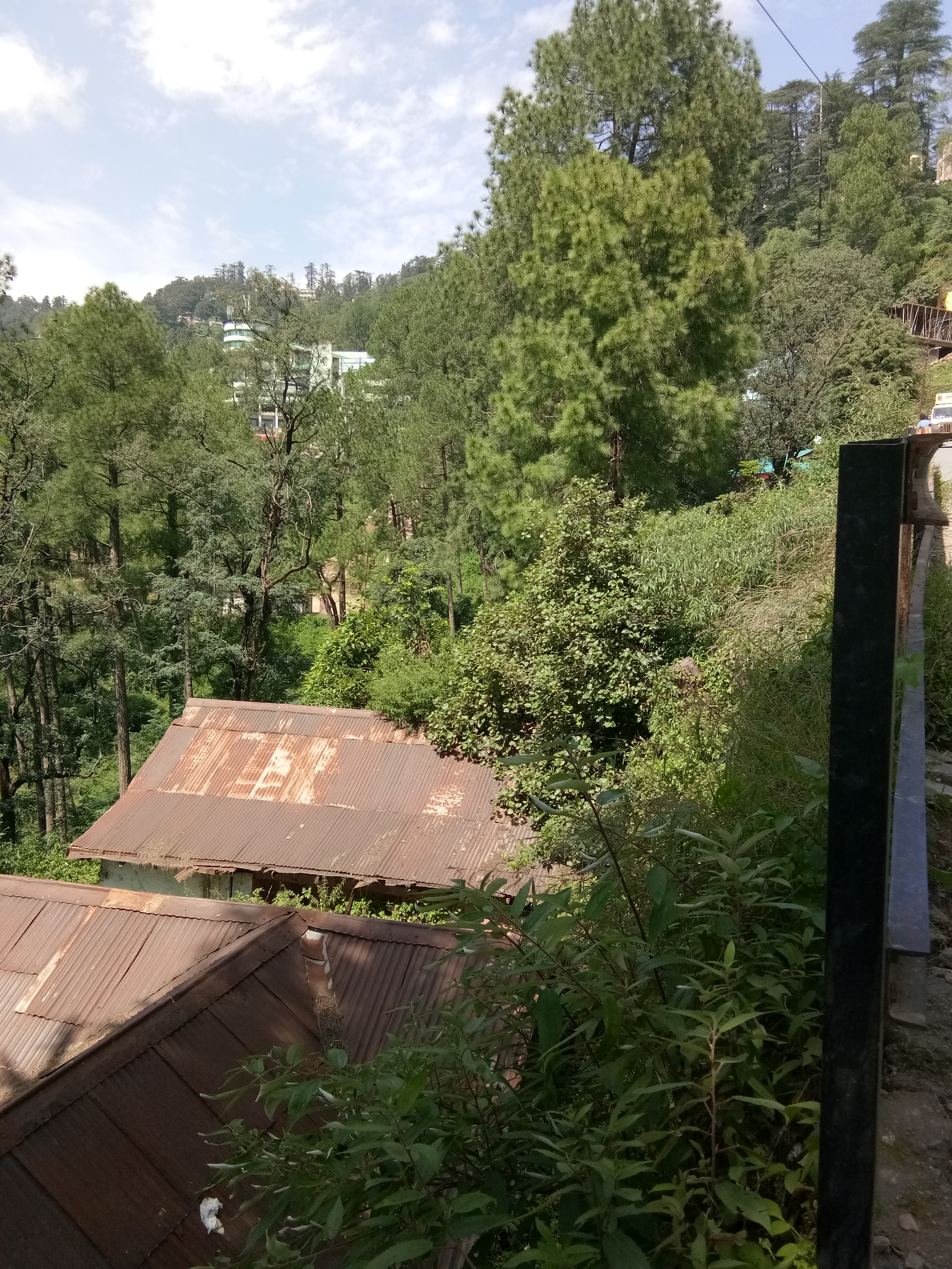 3 Bigha Commercial Plot for sale at Near ISBT Tutikandi Shimla — Drive in — Usable for Shopping Complex, Hotel and Resort — Close To Bus Stand —- Price – 11 Cr