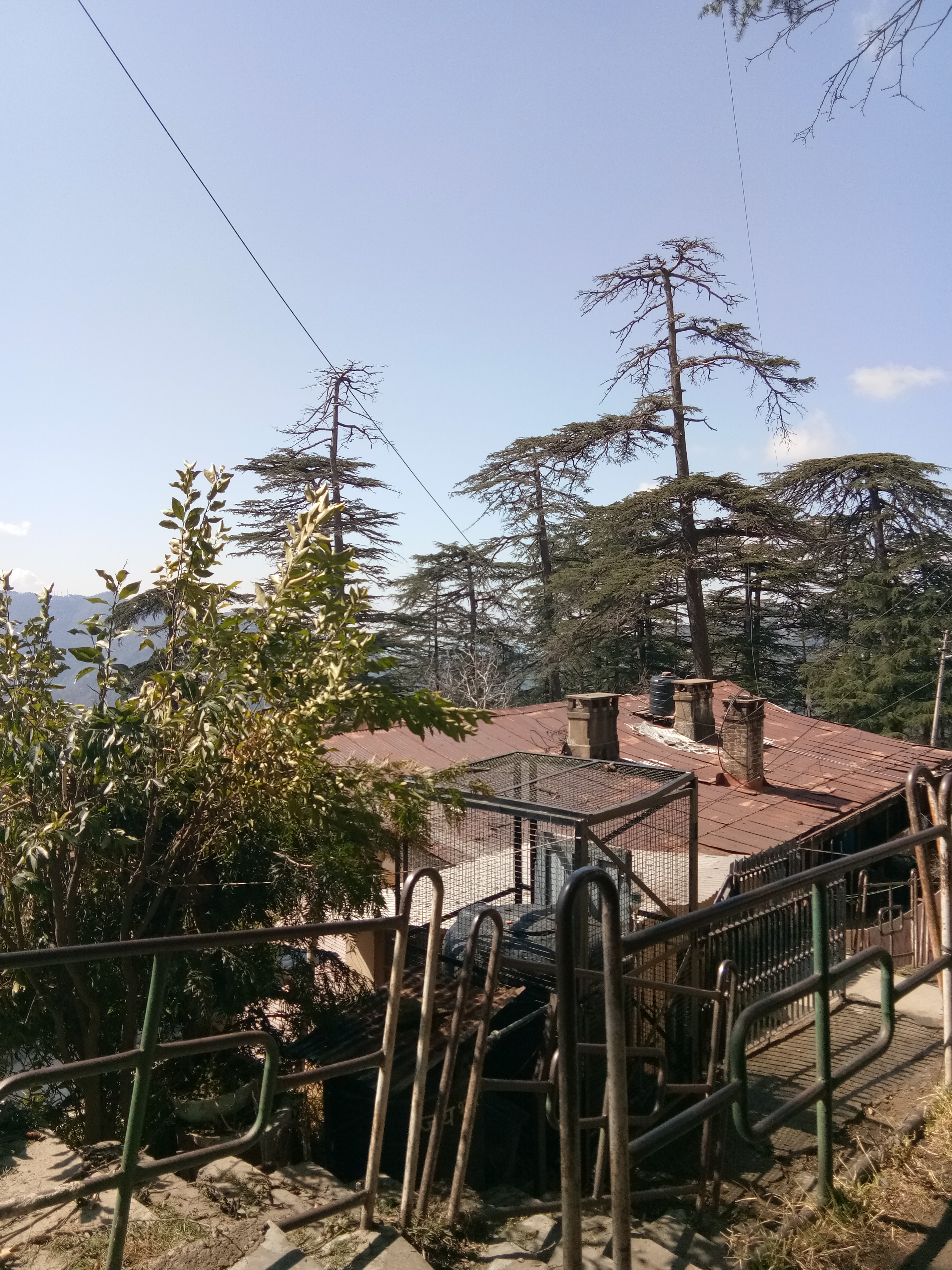 38 Biswa Plot for sale at Near St' Edward School Shimla HP — Drive in — Sunny and beautiful View — Close to Himland hotel and St' Edward School Shimla — Price – 4 Cr