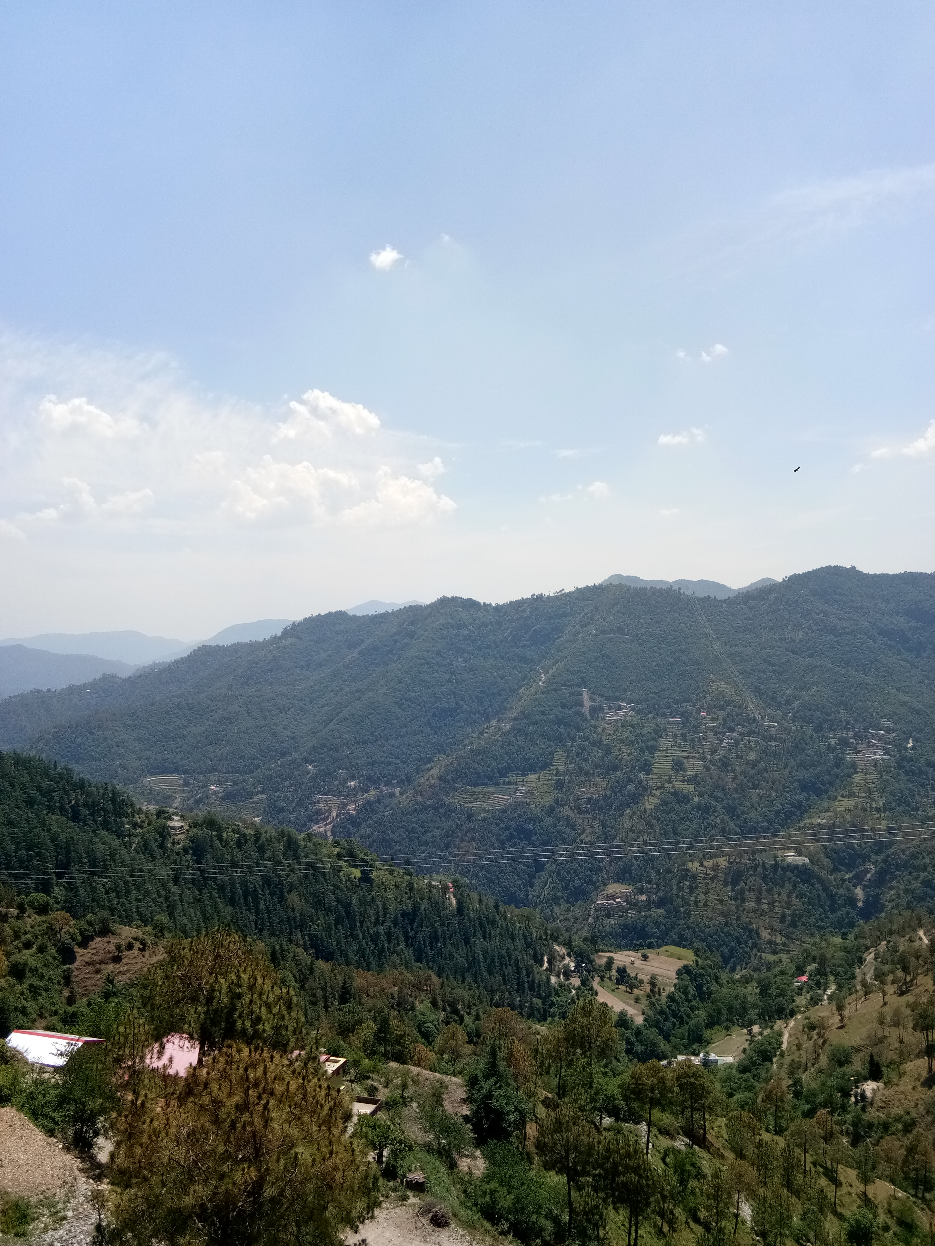 13 Biswa Map- Approved Plot for sale at Near Beolia Shimla — Drive in — Map approved 2+ — Sunny and beautiful View — 400m Link from Main Road — Price – 65 Lakhs