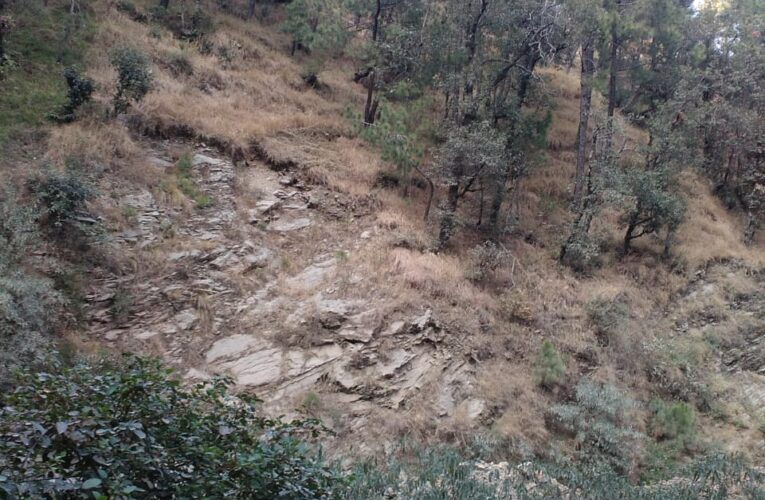 27 Biswa Plot For Sale at Shogi to Mehli By Pass Shimla HP  —- Usable for Cottage and Store —- Adjoining Main road  —- Price – 54 Lakhs