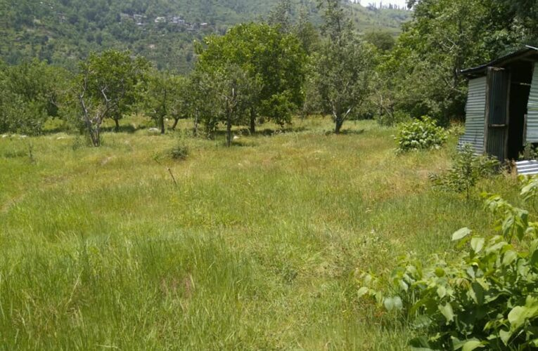 33.5 biswa plot for sale at manali himachal pradesh — 4 km towards rohtang —Usable for hotel,resorts and Villas — Price – 7.50 lakhs Per Biswa —-  Contact:- +91 – 9218227122 – 23