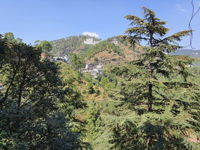 5 Bhk flat for sale near Goel motors Taradevi Shimla —- Non Drive — 2 Minutes (100 mtrs) walking Distance from NH — Shimla View —- Covered Area – 1500 Sq ft — Price – Unfurnished – 65 Lakhs & Furnished -75 Lakhs — Possession within 3 months — Contact :- 9218227122 – 23