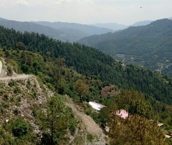 13 Biswa ( 2+ Map Approved ) Plot for sale in Beolia Shimla Himachal Pradesh  — Drive in —- Sunny & Beautiful View —– Price – 80 Lakhs —– Contact Us:-  +91 – 9218227122 – 23