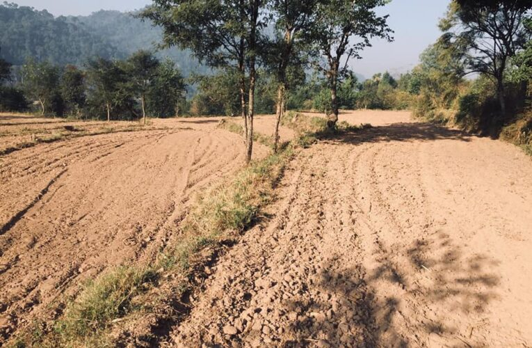 71 Bigha 19 Biswa land with 10 Rooms farm House for sale —– Location – Near Ramshehar Nalagarh to Shimla Road Himachal Pradesh —- 1 km link from Main Highway —– Usable for Hotel, Resorts, Hospital, Educational Institutions & Residential Colony —- Price 10 Lakhs Per Bigha ( 7 Cr) —– Contact Us:- 9218227122 – 23