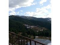 3 Bhk flat and 6 Bhk Duplex for sale in Tarapur near Craignano Mashobra road Shimla Himachal Pradesh —- Drive in —- Covered area – 1800 Sq ft —– Sunny & Very Beautiful view —– Price – 99 Lakhs —- Contact Us:- 9218227122 – 23
