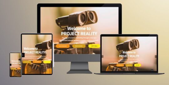 Project Reality Website