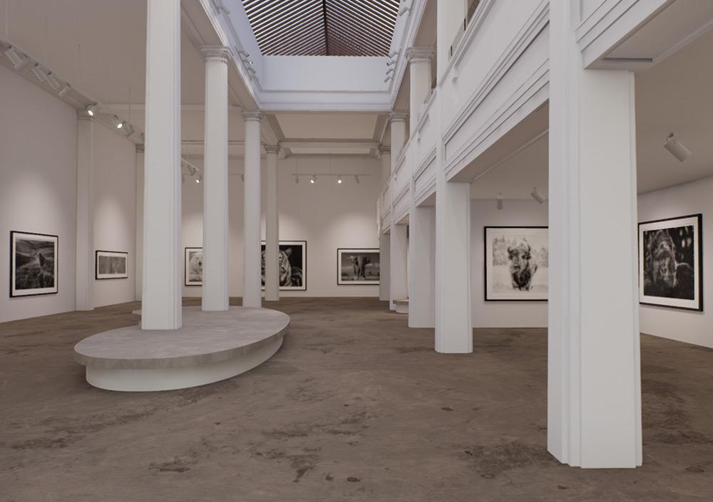 Maddox Gallery