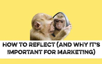 How to reflect and why it's important for your marketing strategy