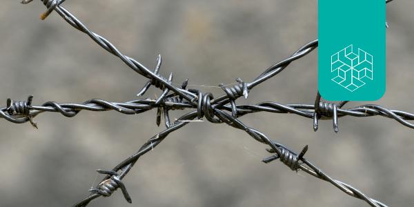 India-China Border Dispute: Strategic Ambiguity versus Strategic Restraint