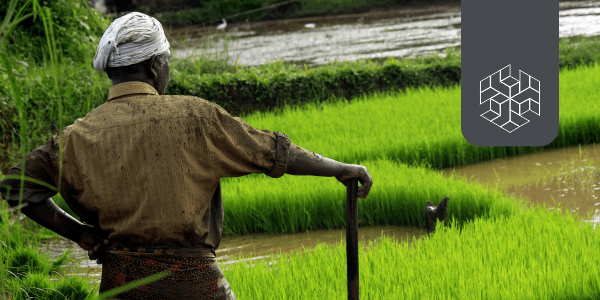 Agricultural Markets in India: Managing Capital Leakages in Commodity Linkages