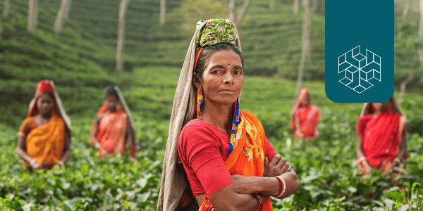 Why Gender Matters: Climate Change and Agriculture in India