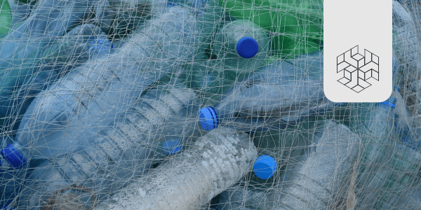 Exploring the Ban on Single-Use Plastic in India