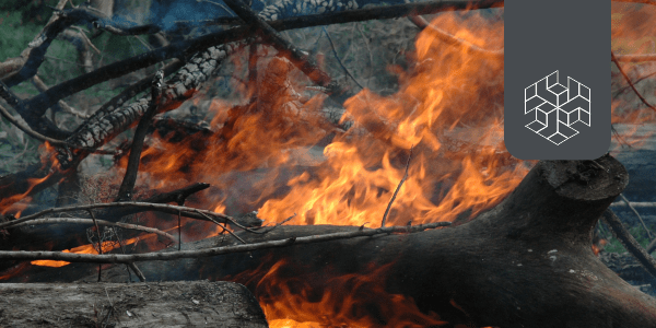 Stubble Burning In North India: Defogging the Facts