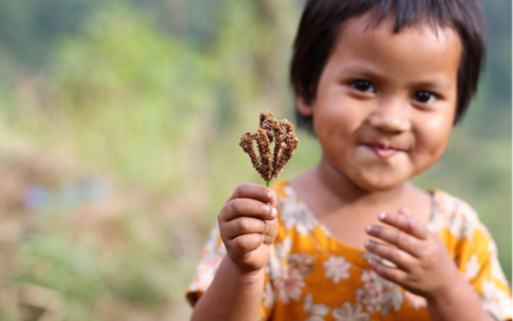 The Keepers Of Seeds And Land, The Khasi Women Of Meghalaya