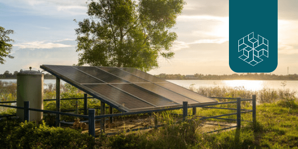 Can Solar Irrigation Pumps Transform Indian Agriculture?