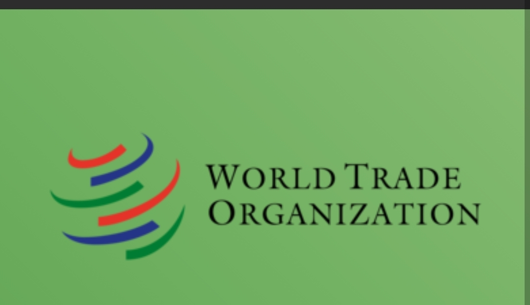 Call for proposals: (WTO Public Forum 2021)