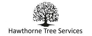 Hawthorne Tree Services