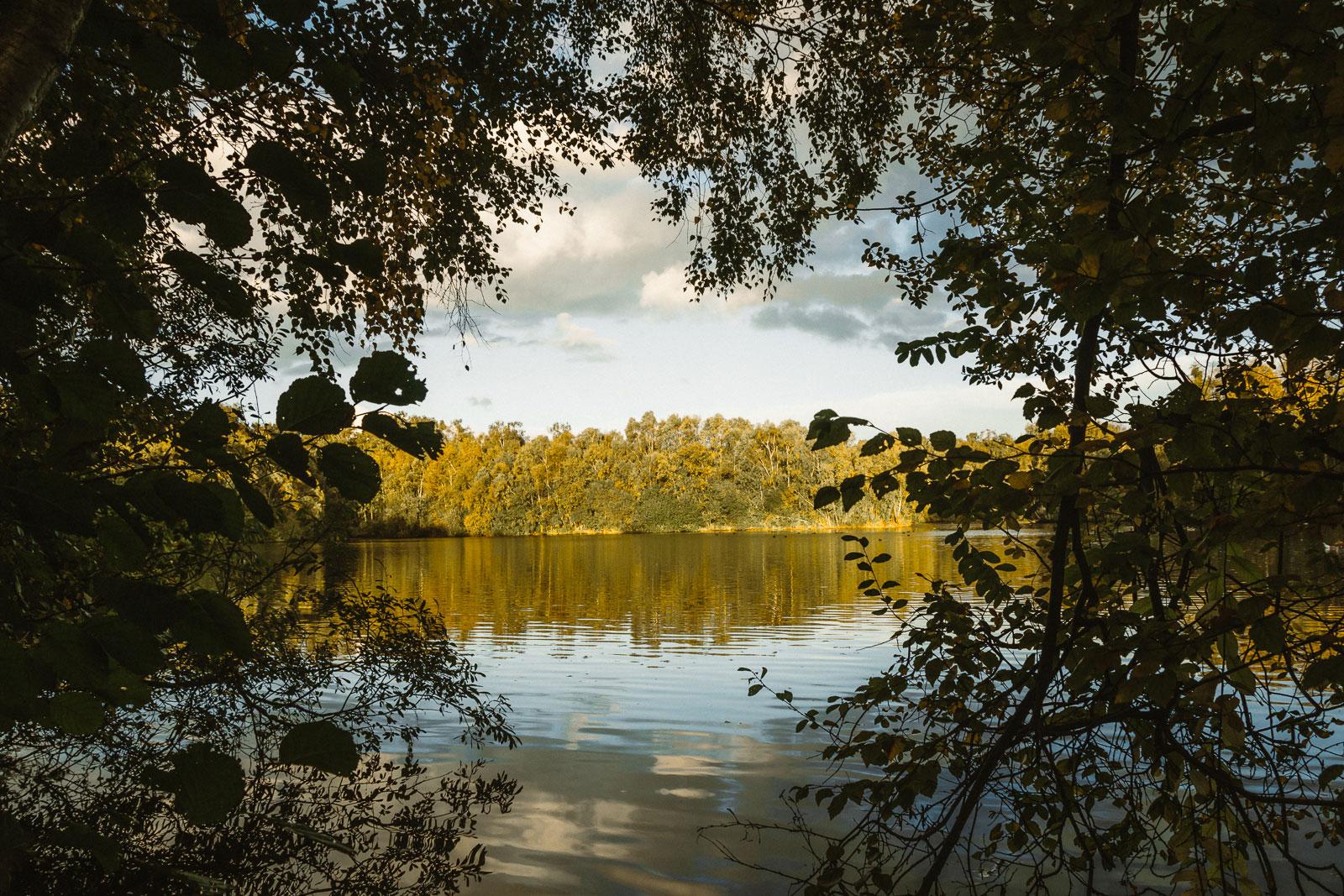 Water Reservoir in Holme Fen behind trees
