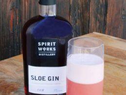 Sloe-gin-fizz