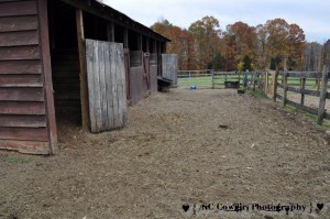 Barn - Before Picture