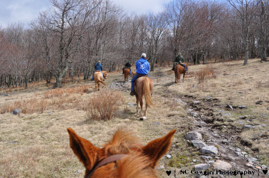 Riding on the Trail at Mt Rogers