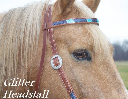 Glitter Headstall for Horses