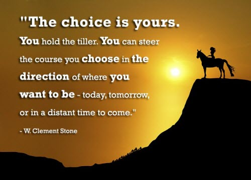 Choose Your Course in Life