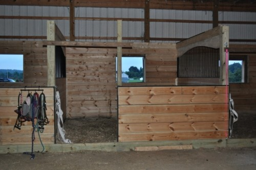 Horse Stall front